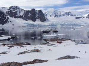 Note our ship - the Antarctica has a way of making you feel insignificant