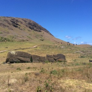 The fallen moai - sort of represents the tragedy of Easter Island