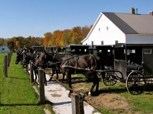 Horse and buggy - Mennonites at church - ahead of the curve on climate change